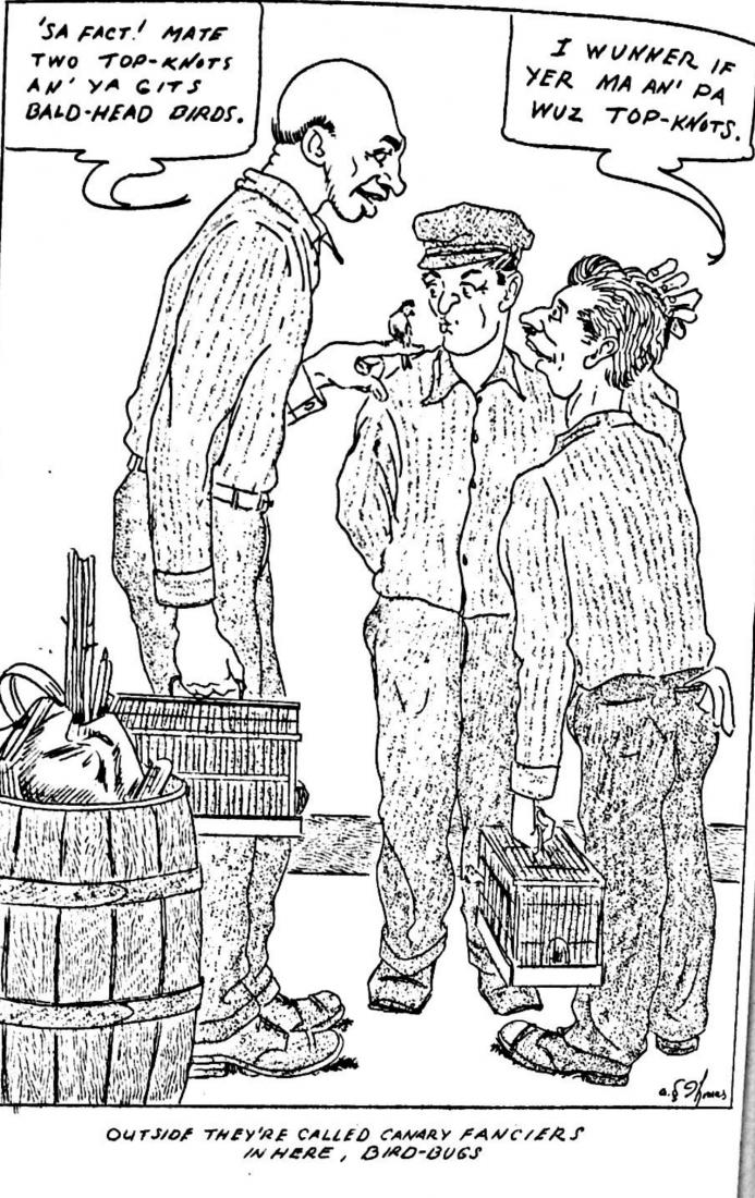 A hand drawn cartoon showing three men wearing prison inmate uniforms and holding canaries.